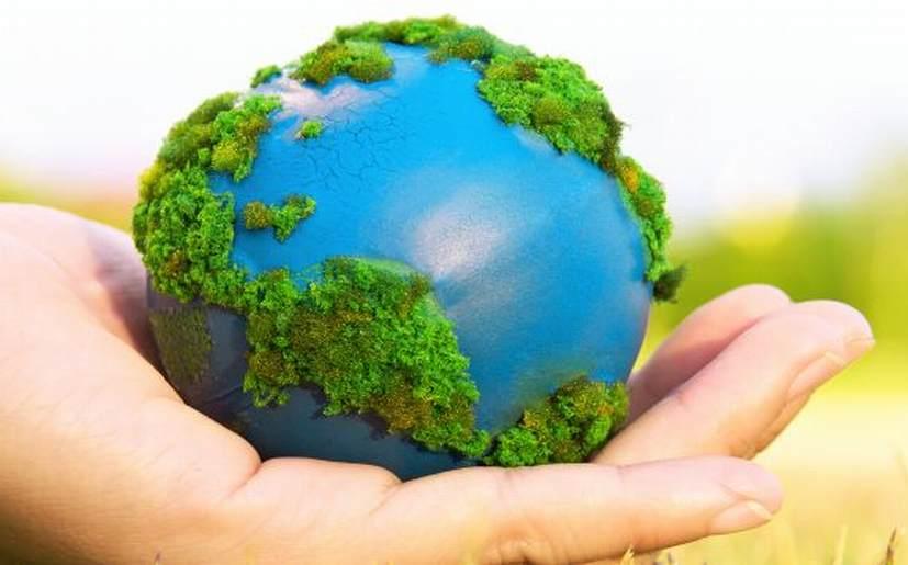 10 consejos para cuidar y proteger el medio ambiente - Como humidificar el ambiente ...