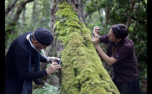 Puerto Williams: la magia del pueblo chileno más austral del planeta | FOTOS