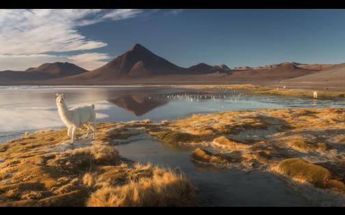 Facebook: el Altiplano boliviano como jamás lo viste