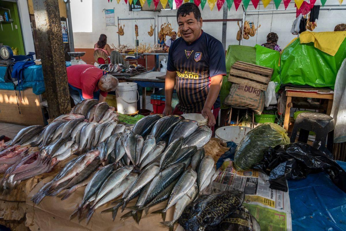 pescados,fraude
