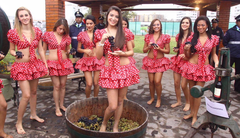 (Fotos: Municipalidad de Surco)