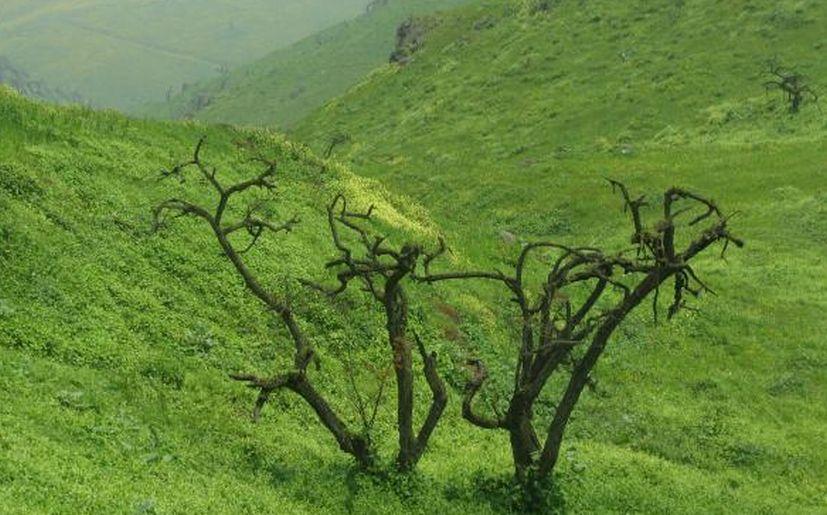 5 bellos lugares cerca de Lima que puedes disfrutar | Nacional ...