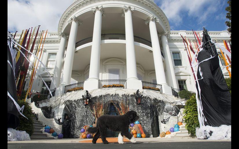 El presidente de Estados Unidos recibirá a decenas de niños este Halloween. (Foto: EFE)