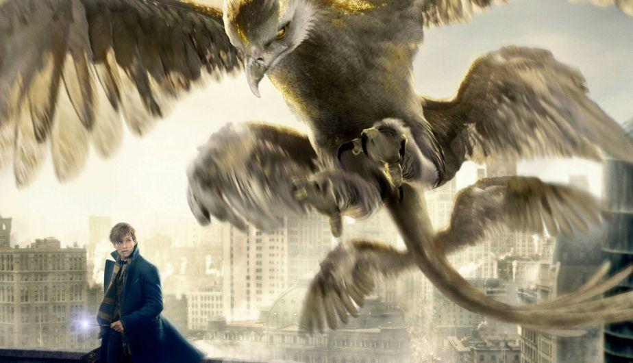 Fantastic Beasts Estos Son Todos Sus Animales Fantasticos Fotos