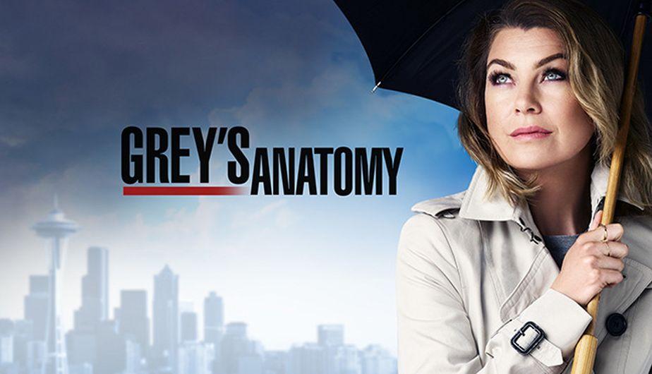 'Grey's Anatomy' confirmó su temporada 14 (Foto: ABC)